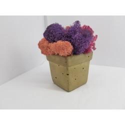 Concrete pot with moss Concrete pot with stabilized moss Concrete planter with moss Concrete planter with stabilized moss
