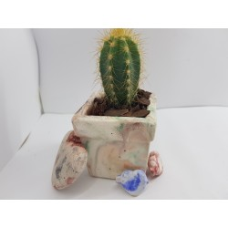Бетон Креативные кашпо Креативные горшки для кактусов Эксклюзивные кашпо Эксклюзивные цветочные горшки Кактус