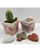 Beautiful and unique flower pots for handmade cacti and succulents