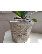 Exclusive and unique handmade flower pots